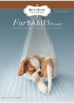 Fur Babies 2019